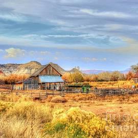 Charlene Cox - Western Ranches