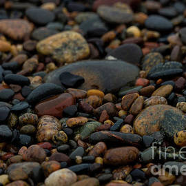 Jennifer White - Wet Pebbles