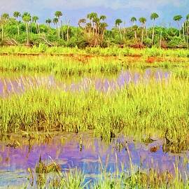 Wetlands Along The Loop by Alice Gipson