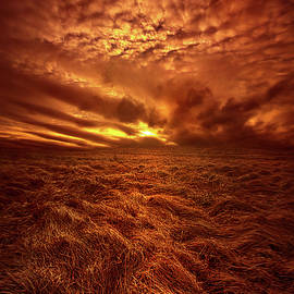 Phil Koch - What You Need Is In Your Soul