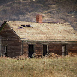 What's Your Story Old House? by Teresa Wilson