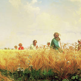 Wheat Field In The Summer by Isabella Howard