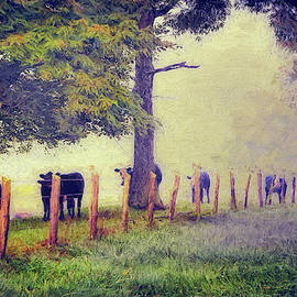 Dan Carmichael - When the Cows Come Home - Blue Ridge AP