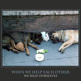 When We Help Each Other by Donna Corless