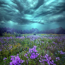 Phil Koch - When You Can Only Feel The Rain
