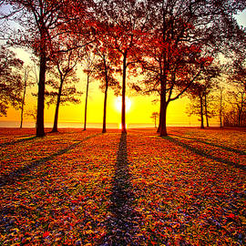 Phil Koch - Where You Have Been Is Part Of Your Story