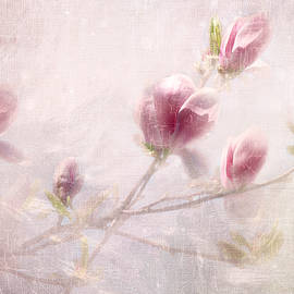 Annie Snel - Whisper of Spring