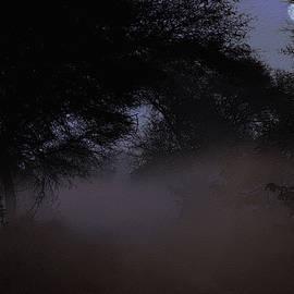 Manjot Singh Sachdeva - Whispering Mist