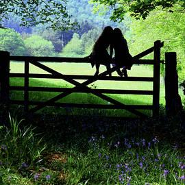 Best friends on a farm gate in Devon by Maggie McCall