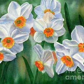 Sharon Freeman - White and Orange Daffodils