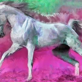 White Arabian Horse Art by Caito Junqueira