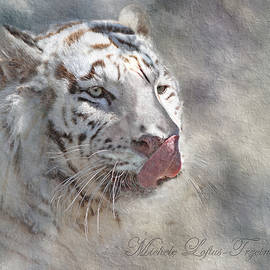 White Bengal Tiger by Michele A Loftus