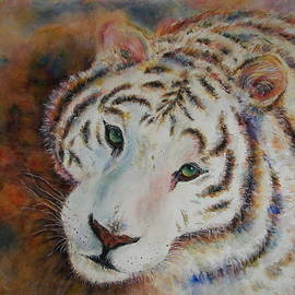White Bengal Tiger Watercolor by Carolyn Gray