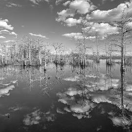 White Clouds over the Everglades Black and White by Debra and Dave Vanderlaan