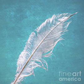 Margaret Koc - White Feather