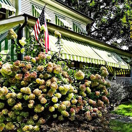 White Hydrangeas By Green Striped Awning by Susan Savad