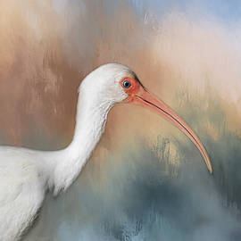 Kim Hojnacki - White Ibis - 2