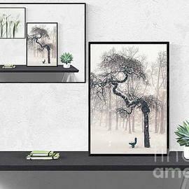 White Iris Interior Design by Terri Waters