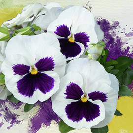 White Pansies by Isabela and Skender Cocoli