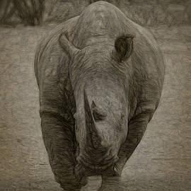 Ernie Echols - White Rhino 3a