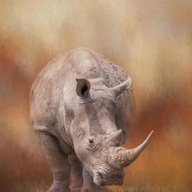 Sharon McConnell - White Rhinoceros In Summer Sun
