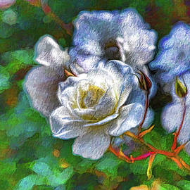 Linda Brody - White Roses Painterly 3