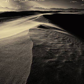 Clifford Pugliese - White Sands