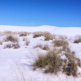 White Sands National Monument Dunes 1 - New Mexico by Brian Harig