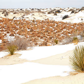 White Sands National Monument Winter Snow - New Mexico by Brian Harig