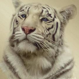 Jan Galland - White Tiger