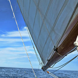 Tony Grider - Wide Sail Blue Horizon