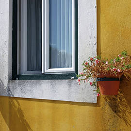 Window With Vases - Carlos Caetano