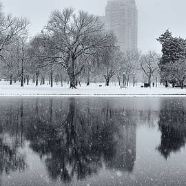 Snowy Reflections Of Trees In Lake At City Park, Denver Co  by Philip Rodgers