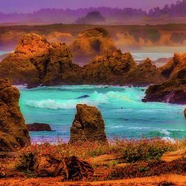 Wild Mendocino Coast - Garry Gay
