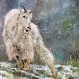 Wild Mountain Goat - David Stribbling