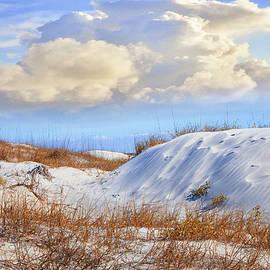 Debra and Dave Vanderlaan - Wild Sand Dunes