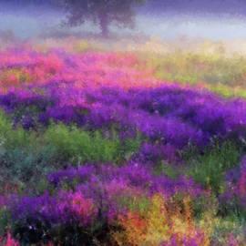 Armin Sabanovic - Wild Spring