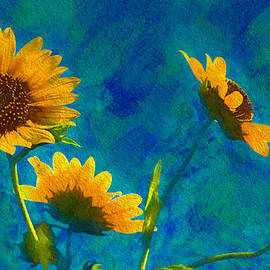 Wild Sunflowers Singing by Anna Louise