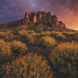 Peter Coskun - Wild Superstitions