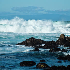 Wild Surf by Julieanne Case