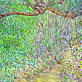 Joel Bruce Wallach - Wilderness Pathway