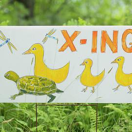 Morgain Bailey - Wildlife Crossing Sign