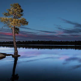 Willow Springs Lake, Arizona by Dave Wilson
