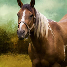 Jordan Blackstone - Wind Of Heaven - Horse Art
