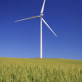Windy Corduroy - Wind Turbine