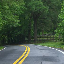 Winding Road by Buddy Scott