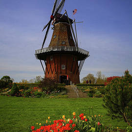 Rachel Cohen - Windmill at Tulip Time