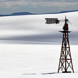 Nicholas Blackwell - Windmill in Snowy Field