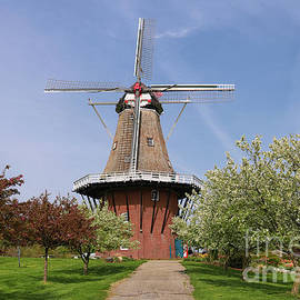 Rachel Cohen - Windmill Island Gardens in May