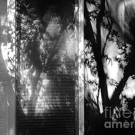 Lauren Leigh Hunter Fine Art Photography - Window of Wonder